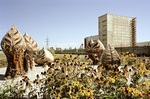 Triffids. Chernobyl nuclear power station Ukraine 2003 by Juha Tolonen